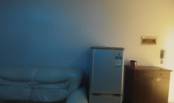 双流九江 学府公寓 1室1厅1卫 58平米