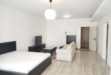 世贸国际公寓 75.0平米 14000.0元/月