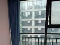 高新区,南延线,一品CG,1室1厅,40㎡