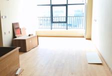 泰禾中央广场 大四居 可办公可居住 精装修 随时看房入住