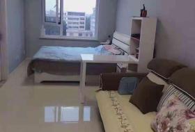 沈北新区,道义,唐轩公馆,唐轩公馆,1室1厅,48㎡