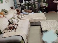 文山市,文山,加州花园,1室1厅,40㎡