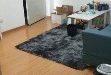 紫金新园二区 小园地铁站旁 精装修正规一居室 家具家电齐全