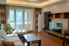 和平区,长白,万科鹿特丹,万科鹿特丹,2室2厅,92㎡